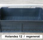 holandez 12 od regenerata